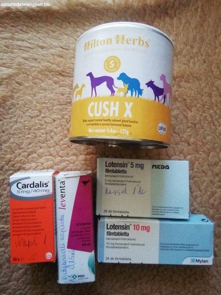 Gyógyszerek kutyának
