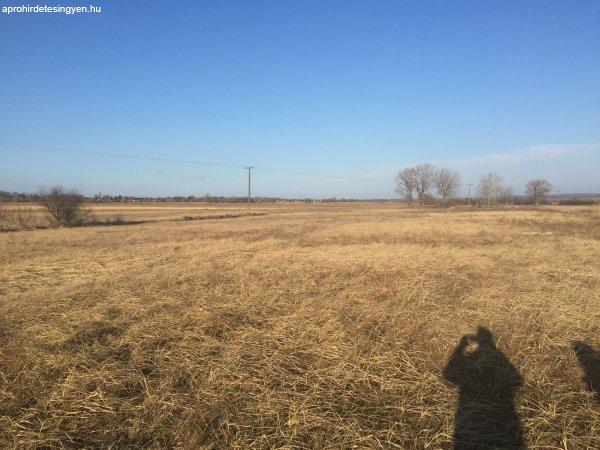 Eladó mező művelődésre,gazdálkodásra illetve BEFEKTETÉSRE Ba